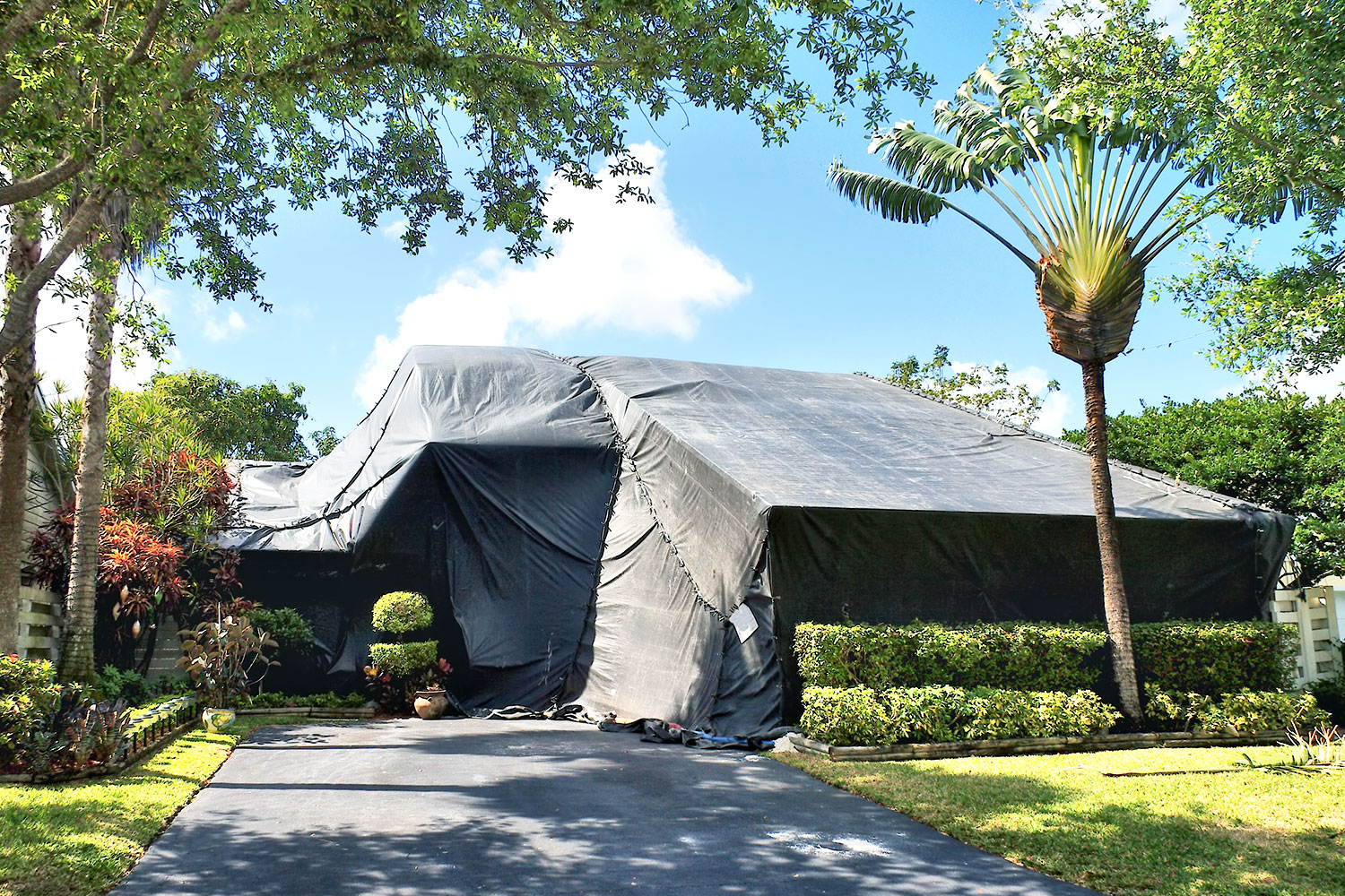 central-coast-termite-fumigation-tent-neu